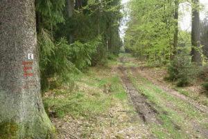 Eselsweg in Mernes